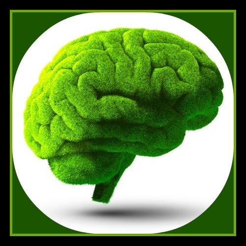 Editted brain